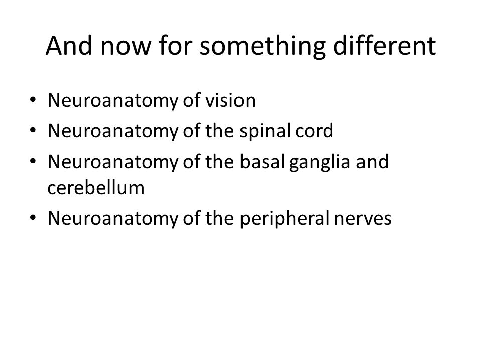 And now for something different Neuroanatomy of vision Neuroanatomy of the spinal cord Neuroanatomy of the basal ganglia and cerebellum Neuroanatomy of the peripheral nerves