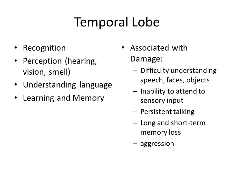 Temporal Lobe Recognition Perception (hearing, vision, smell) Understanding language Learning and Memory Associated with Damage: – Difficulty understa