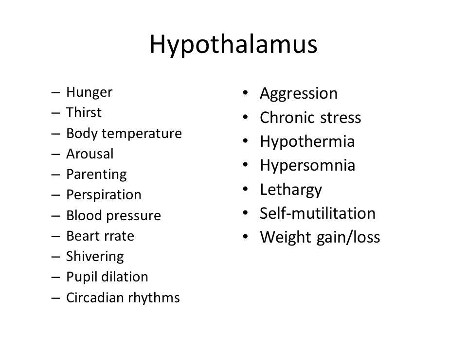 Hypothalamus – Hunger – Thirst – Body temperature – Arousal – Parenting – Perspiration – Blood pressure – Beart rrate – Shivering – Pupil dilation – C