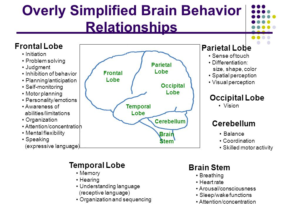 What's Different about TBI. No two brain injuries are exactly the same.