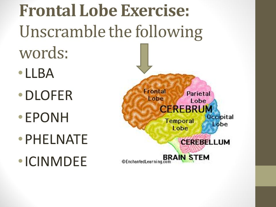 Frontal Lobe Exercise: Unscramble the following words: LLBA DLOFER EPONH PHELNATE ICINMDEE