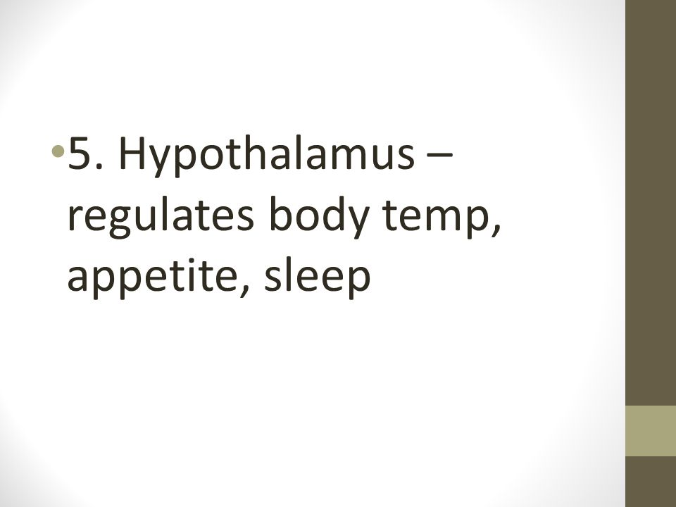 5. Hypothalamus – regulates body temp, appetite, sleep