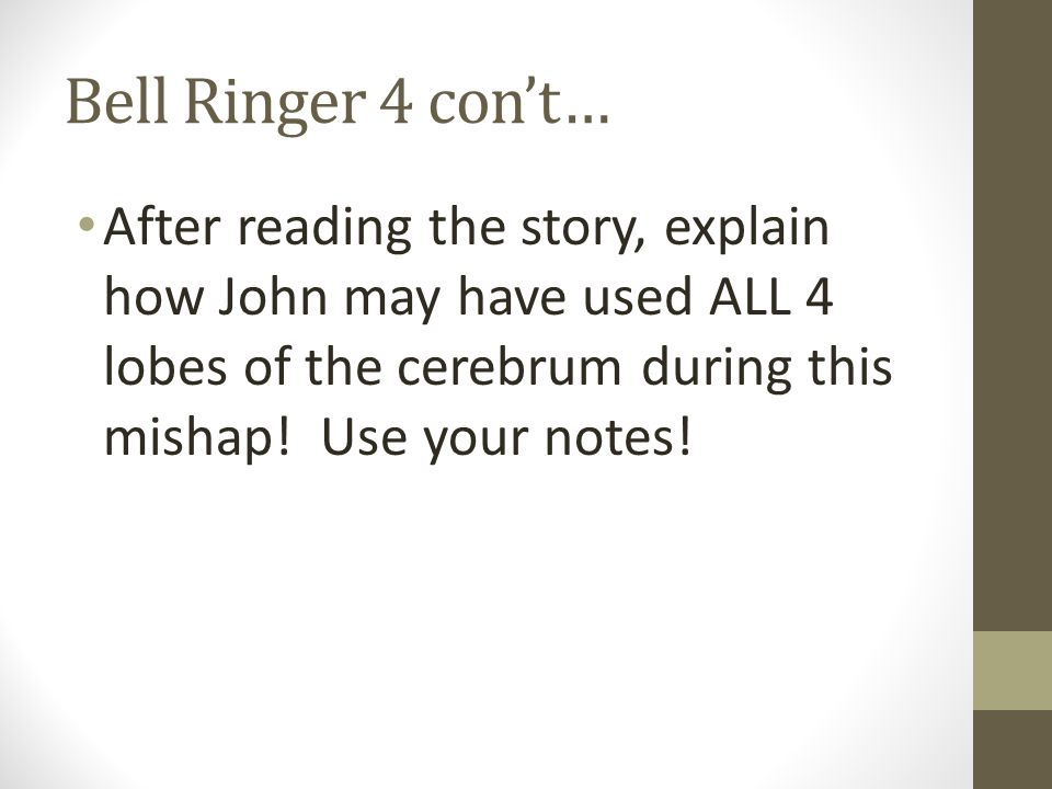 Bell Ringer 4 con't… After reading the story, explain how John may have used ALL 4 lobes of the cerebrum during this mishap! Use your notes!