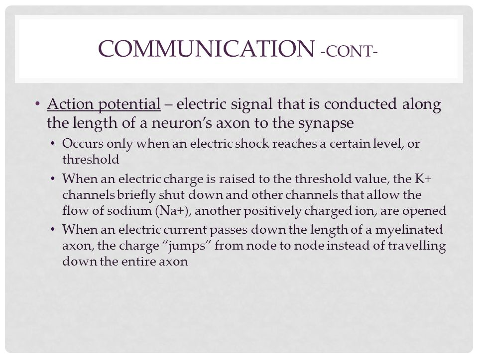COMMUNICATION -CONT- Action potential – electric signal that is conducted along the length of a neuron's axon to the synapse Occurs only when an elect