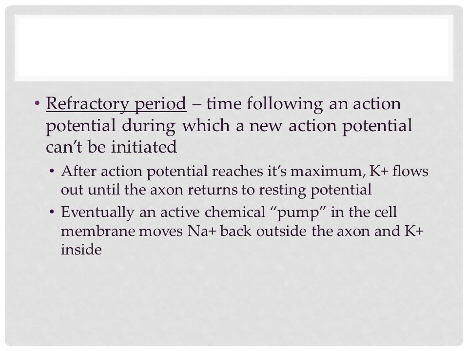 Refractory period – time following an action potential during which a new action potential can't be initiated After action potential reaches it's maxi