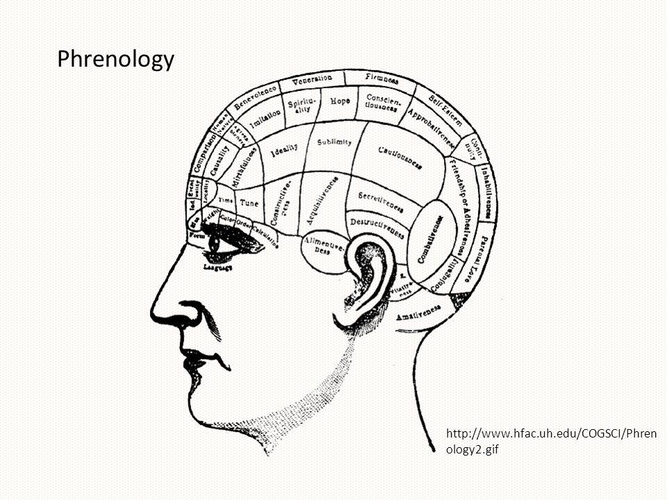 Phrenology http://www.hfac.uh.edu/COGSCI/Phren ology2.gif