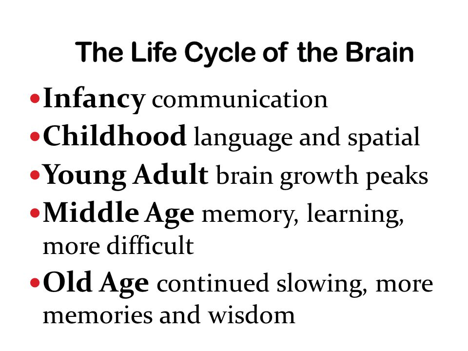 Infancy communication Childhood language and spatial Young Adult brain growth peaks Middle Age memory, learning, more difficult Old Age continued slowing, more memories and wisdom
