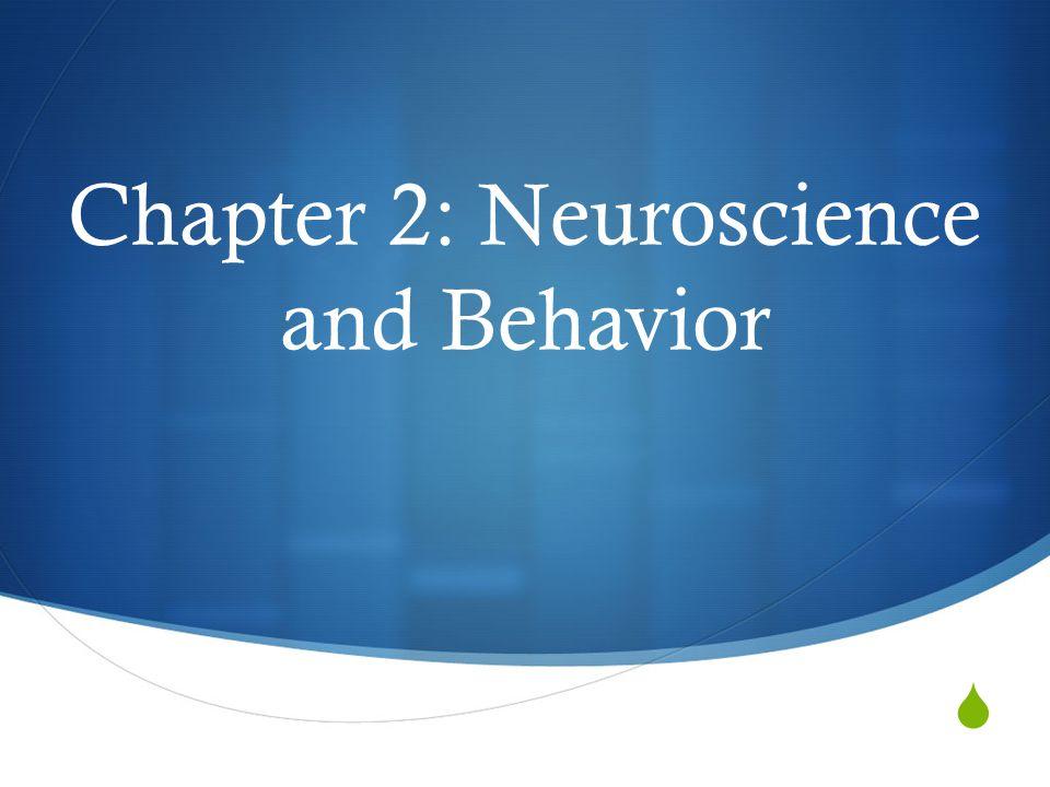  Chapter 2: Neuroscience and Behavior