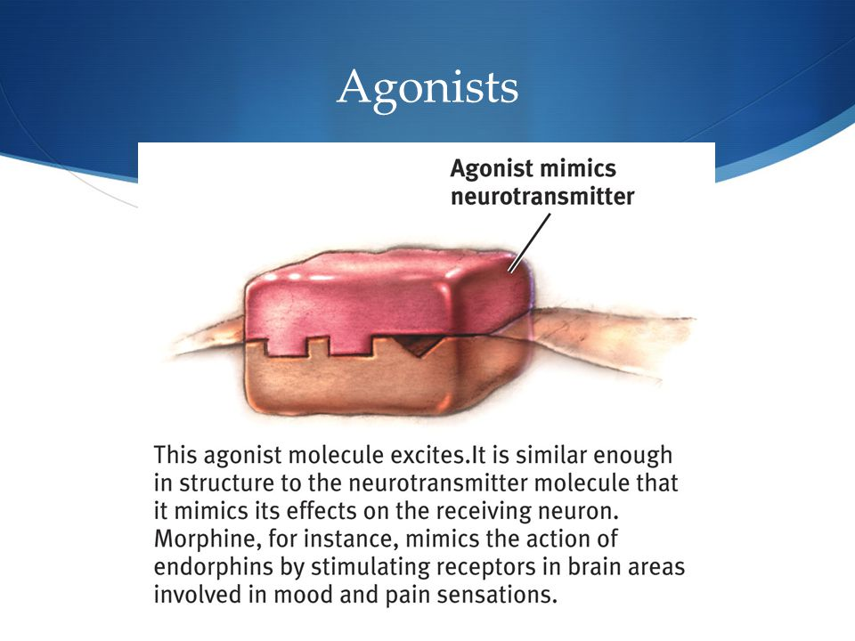 15 Agonists
