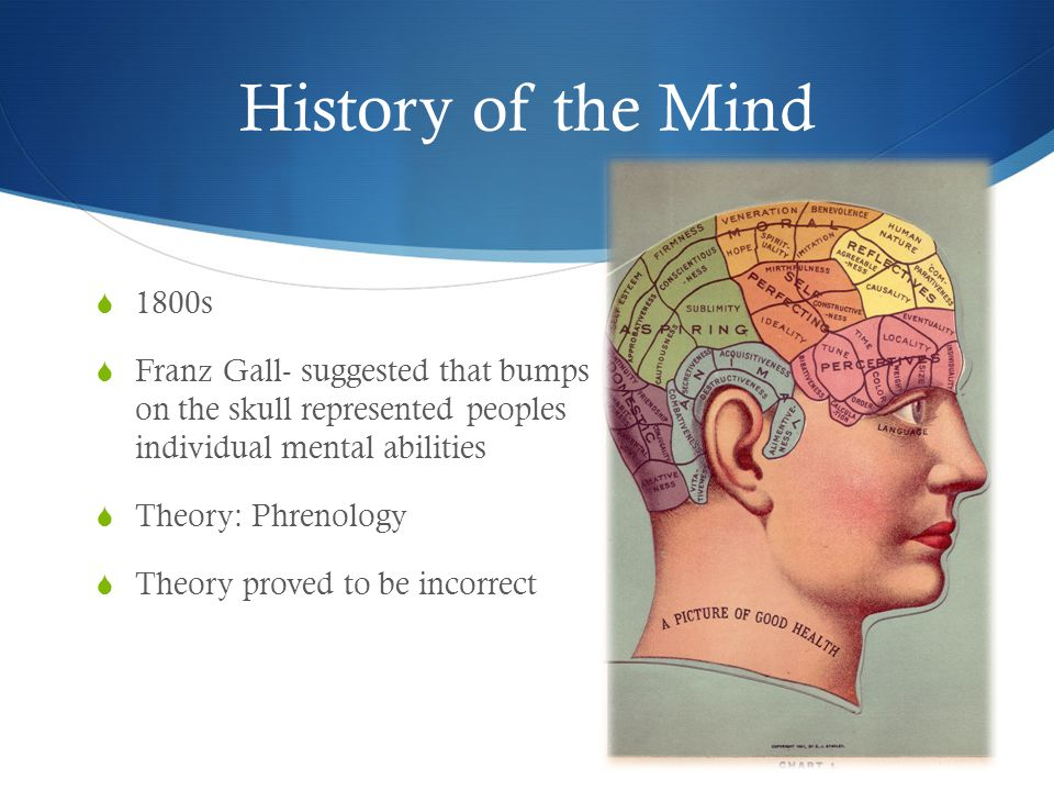 History of the Mind  1800s  Franz Gall- suggested that bumps on the skull represented peoples individual mental abilities  Theory: Phrenology  Theory proved to be incorrect