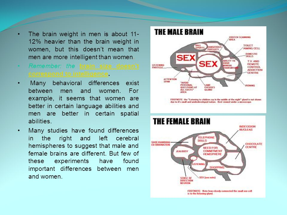 The brain weight in men is about 11- 12% heavier than the brain weight in women, but this doesn't mean that men are more intelligent than women. Remem