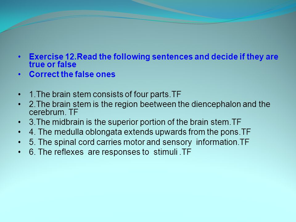 Exercise 12.Read the following sentences and decide if they are true or false Correct the false ones 1.The brain stem consists of four parts.TF 2.The brain stem is the region beetween the diencephalon and the cerebrum.