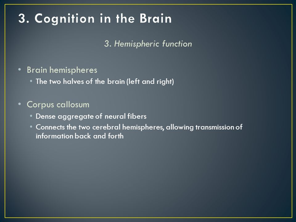 3. Hemispheric function Brain hemispheres The two halves of the brain (left and right) Corpus callosum Dense aggregate of neural fibers Connects the t