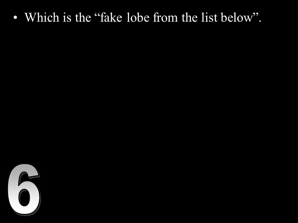 """Which is the """"fake lobe from the list below"""". A.) Frontal Lobe- associated with reasoning, planning, parts of speech, movement, emotions, and problem"""