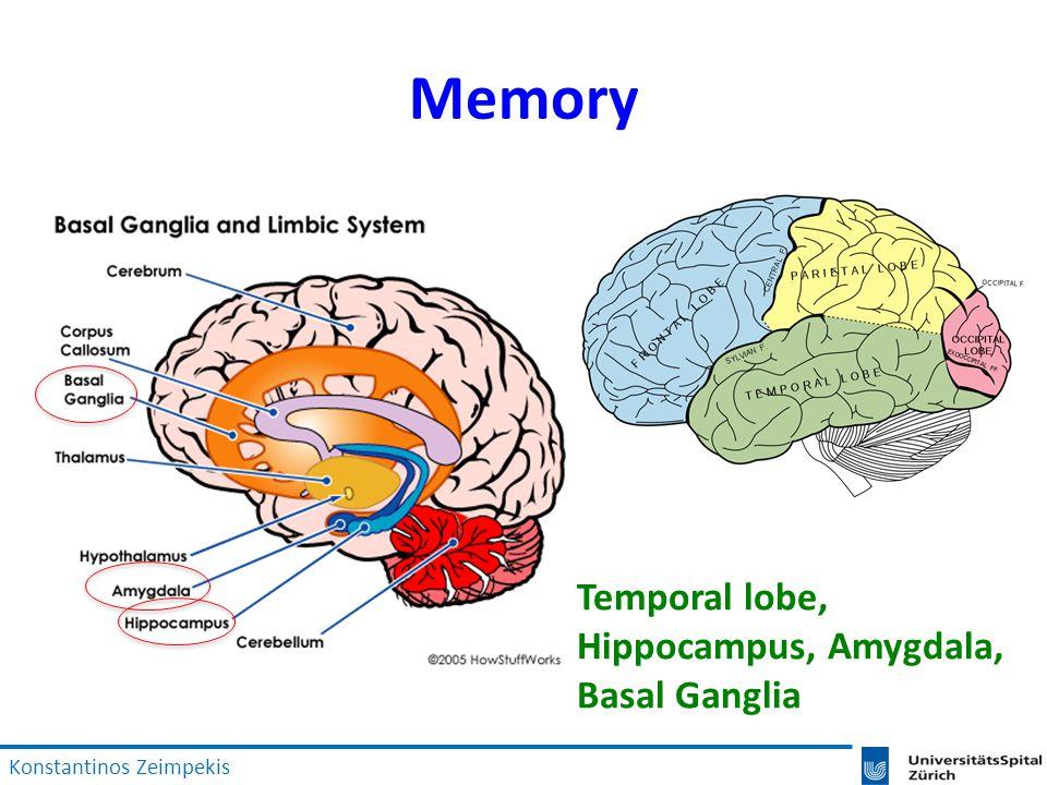 Memory Temporal lobe, Hippocampus, Amygdala, Basal Ganglia Konstantinos Zeimpekis