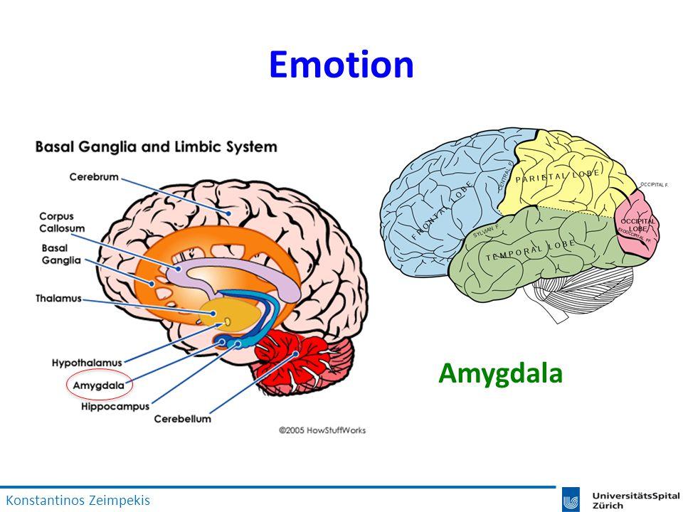 Emotion Amygdala Konstantinos Zeimpekis