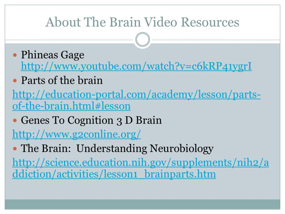 About The Brain Video Resources Phineas Gage http://www.youtube.com/watch v=c6kRP41ygrI http://www.youtube.com/watch v=c6kRP41ygrI Parts of the brain http://education-portal.com/academy/lesson/parts- of-the-brain.html#lesson Genes To Cognition 3 D Brain http://www.g2conline.org/ The Brain: Understanding Neurobiology http://science.education.nih.gov/supplements/nih2/a ddiction/activities/lesson1_brainparts.htm