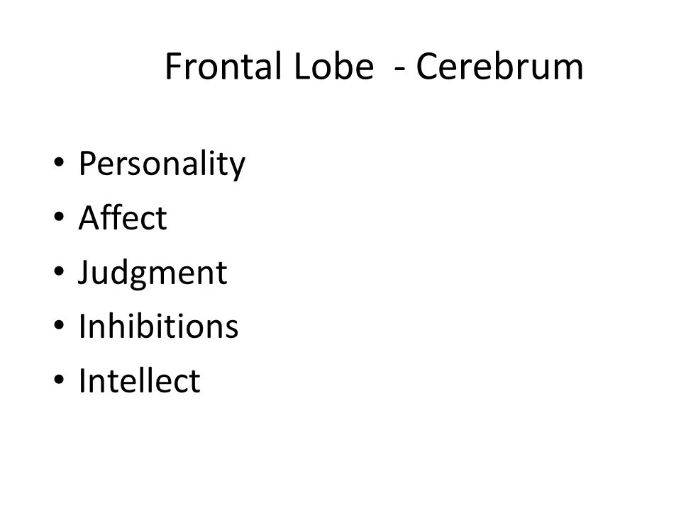 Frontal Lobe - Cerebrum Personality Affect Judgment Inhibitions Intellect