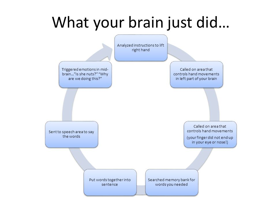 What your brain just did…