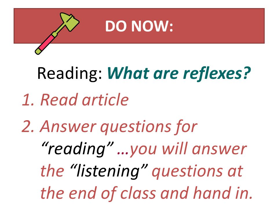 DO NOW: Reading: What are reflexes.