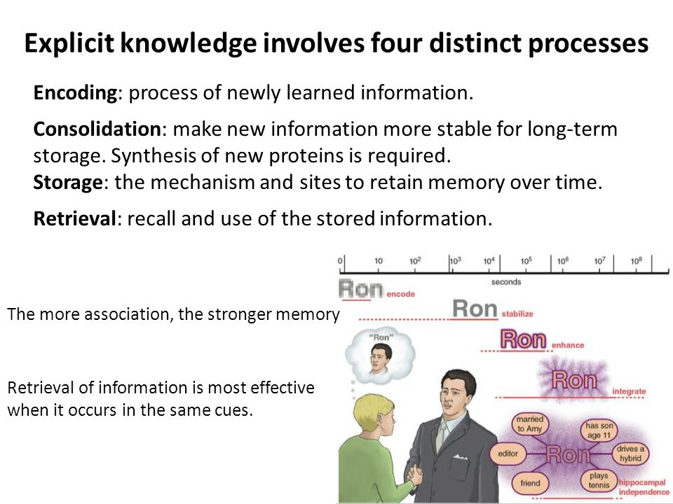 Explicit knowledge involves four distinct processes Encoding: process of newly learned information. Consolidation: make new information more stable fo