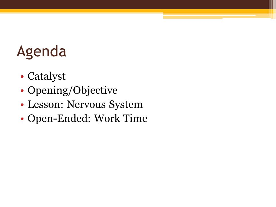 Agenda Catalyst Opening/Objective Lesson: Nervous System Open-Ended: Work Time