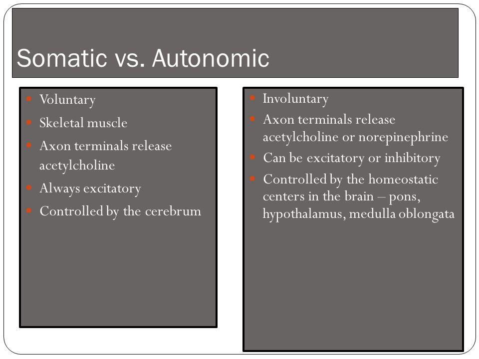 Somatic vs.