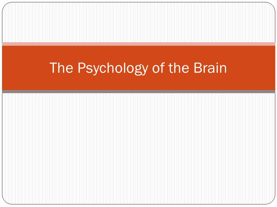 The Psychology of the Brain