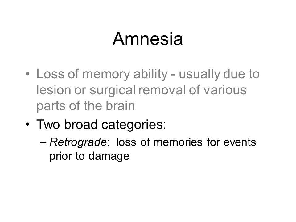 Next Time Awareness and Your Brain