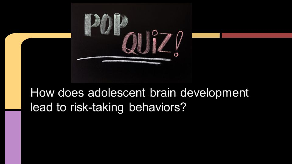 How does adolescent brain development lead to risk-taking behaviors?
