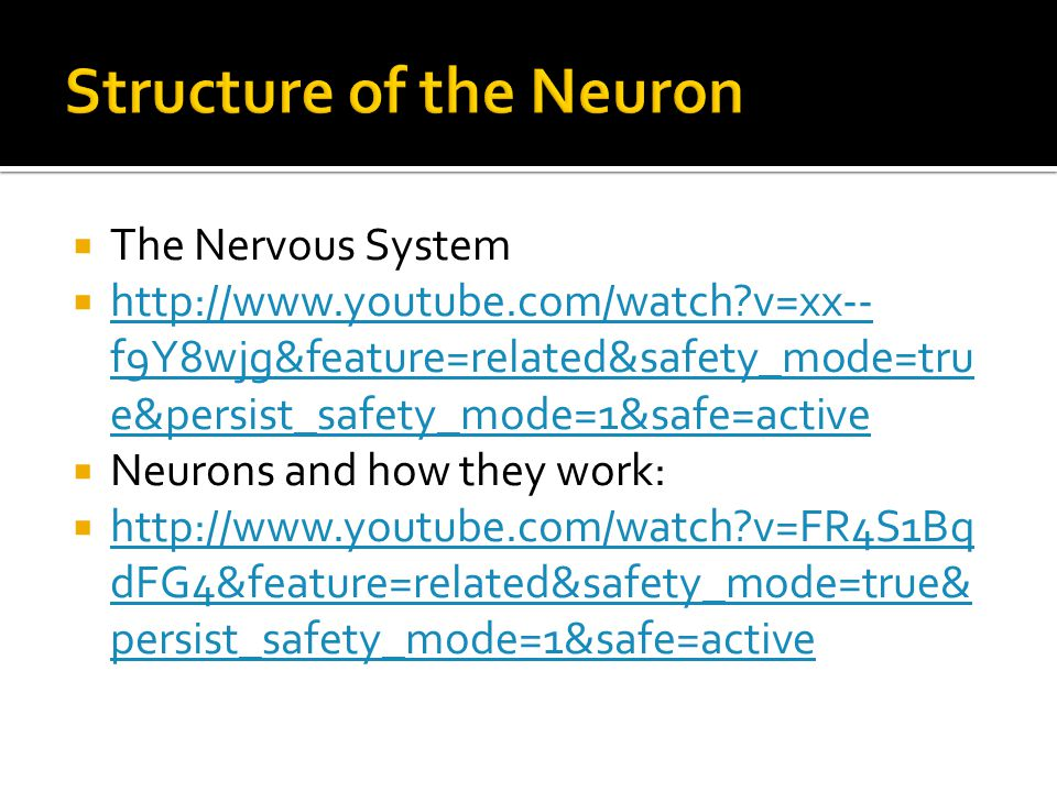  The Nervous System  http://www.youtube.com/watch v=xx-- f9Y8wjg&feature=related&safety_mode=tru e&persist_safety_mode=1&safe=active http://www.youtube.com/watch v=xx-- f9Y8wjg&feature=related&safety_mode=tru e&persist_safety_mode=1&safe=active  Neurons and how they work:  http://www.youtube.com/watch v=FR4S1Bq dFG4&feature=related&safety_mode=true& persist_safety_mode=1&safe=active http://www.youtube.com/watch v=FR4S1Bq dFG4&feature=related&safety_mode=true& persist_safety_mode=1&safe=active