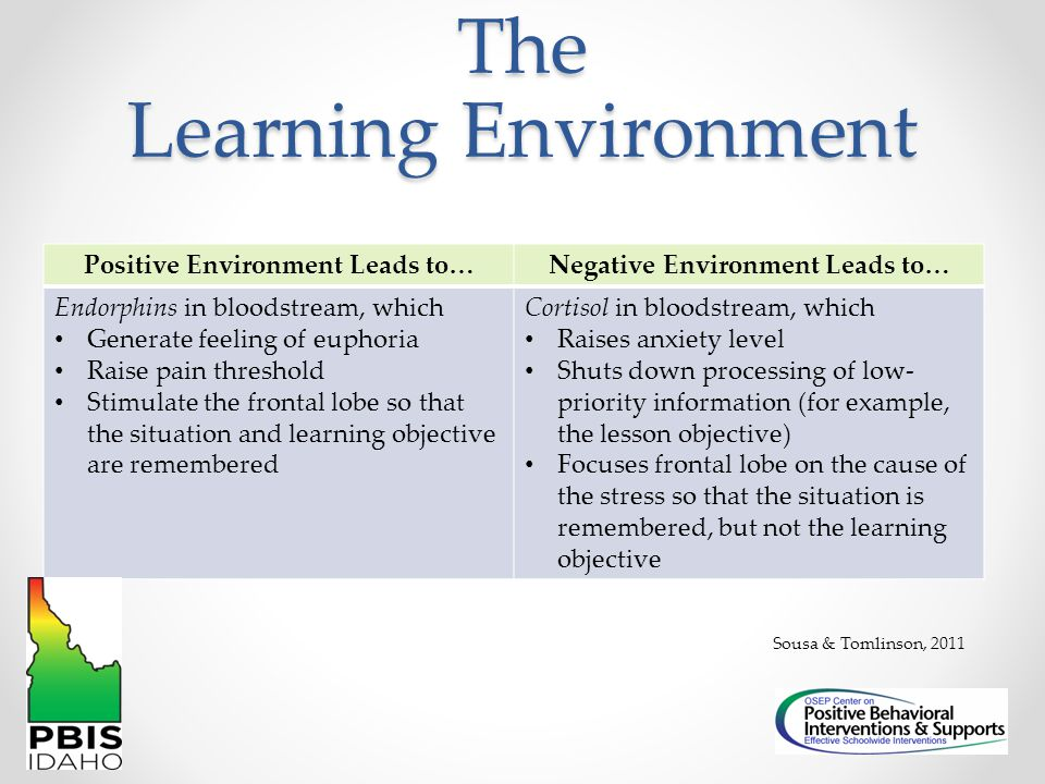 The Learning Environment Positive Environment Leads to…Negative Environment Leads to… Endorphins in bloodstream, which Generate feeling of euphoria Ra