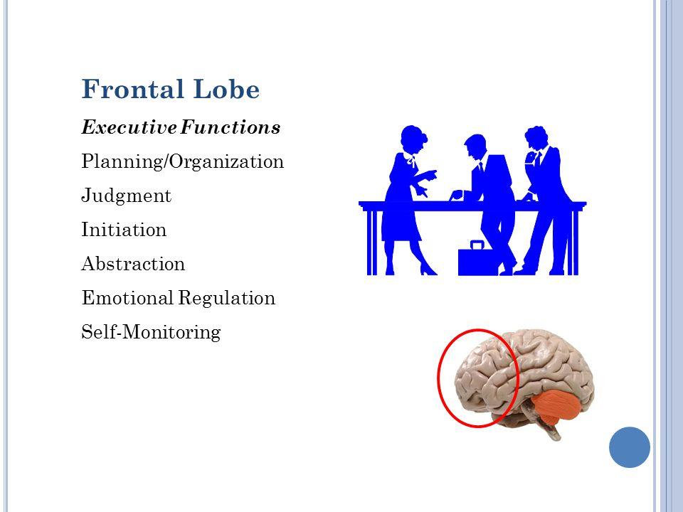 Frontal Lobe Executive Functions Planning/Organization Judgment Initiation Abstraction Emotional Regulation Self-Monitoring