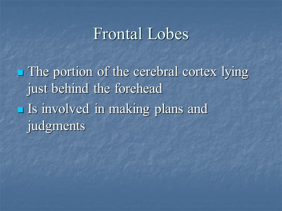 Frontal Lobes The portion of the cerebral cortex lying just behind the forehead The portion of the cerebral cortex lying just behind the forehead Is involved in making plans and judgments Is involved in making plans and judgments