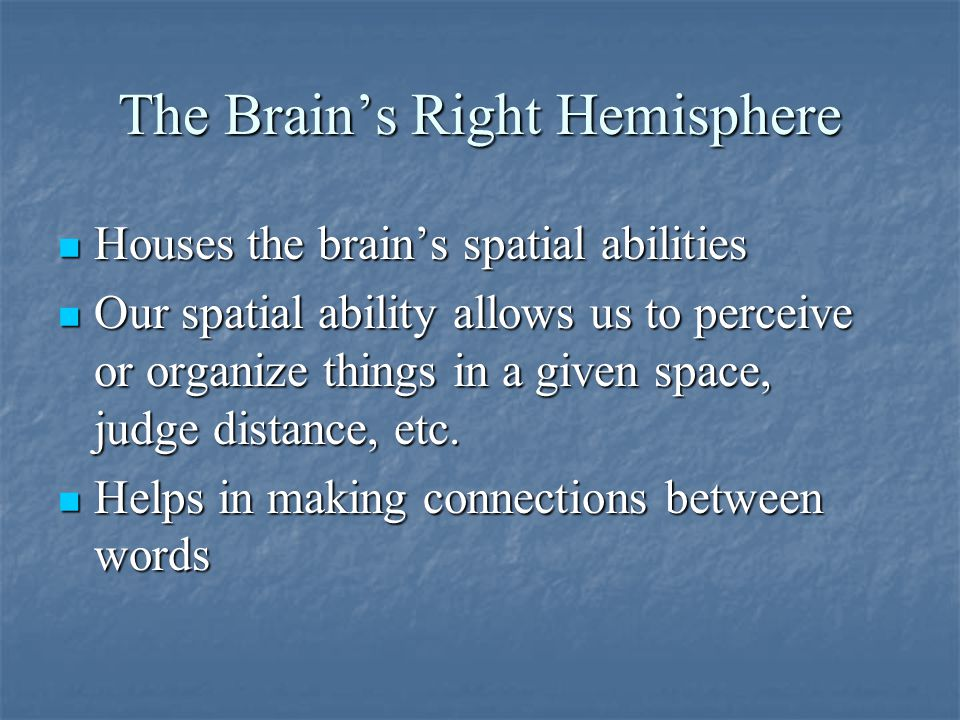 The Brain's Right Hemisphere Houses the brain's spatial abilities Houses the brain's spatial abilities Our spatial ability allows us to perceive or organize things in a given space, judge distance, etc.