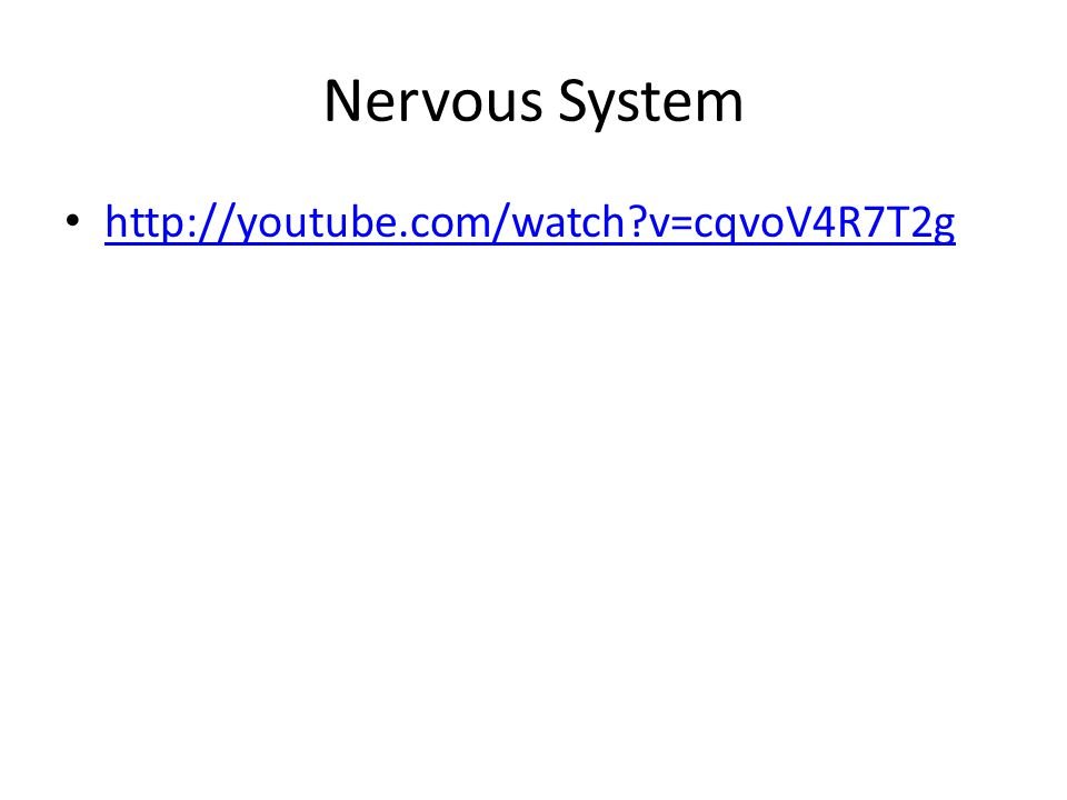 Nervous System http://youtube.com/watch v=cqvoV4R7T2g