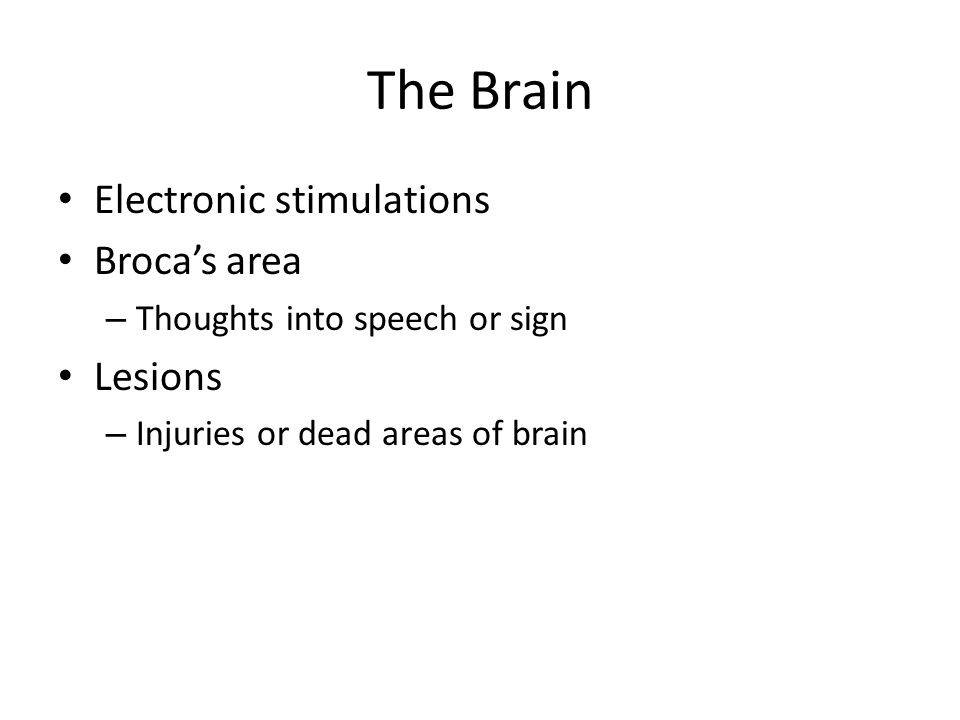The Brain Electronic stimulations Broca's area – Thoughts into speech or sign Lesions – Injuries or dead areas of brain