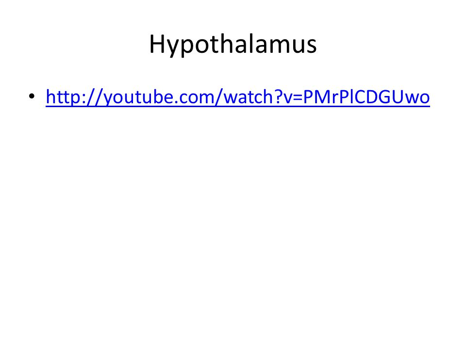 Hypothalamus http://youtube.com/watch v=PMrPlCDGUwo
