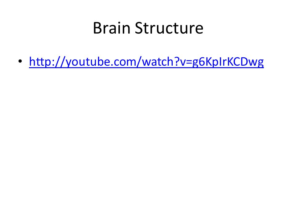 Brain Structure http://youtube.com/watch v=g6KpIrKCDwg
