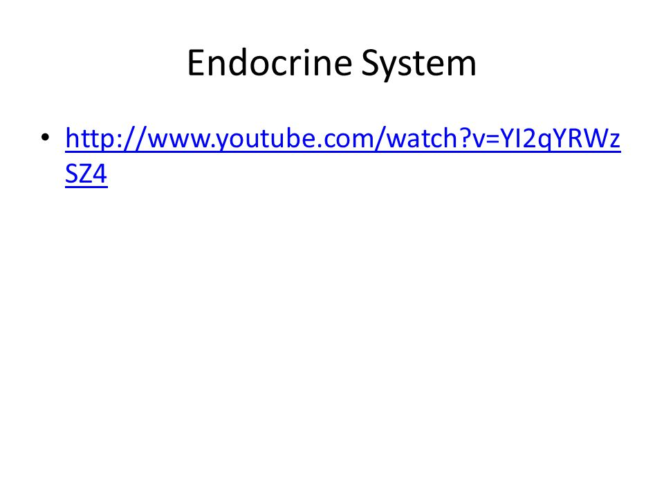Endocrine System http://www.youtube.com/watch v=YI2qYRWz SZ4 http://www.youtube.com/watch v=YI2qYRWz SZ4
