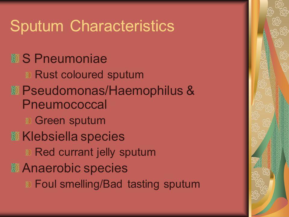Sputum Characteristics S Pneumoniae Rust coloured sputum Pseudomonas/Haemophilus & Pneumococcal Green sputum Klebsiella species Red currant jelly sput