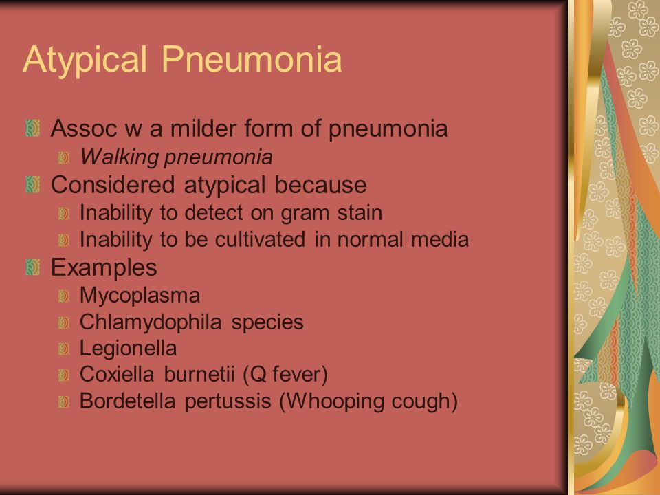 Atypical Pneumonia Assoc w a milder form of pneumonia Walking pneumonia Considered atypical because Inability to detect on gram stain Inability to be