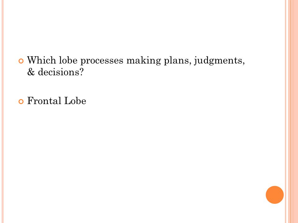 Which lobe processes making plans, judgments, & decisions Frontal Lobe