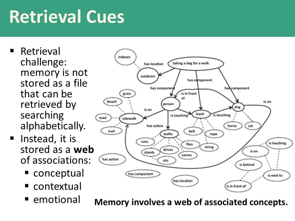 Retrieval Cues  Retrieval challenge: memory is not stored as a file that can be retrieved by searching alphabetically.
