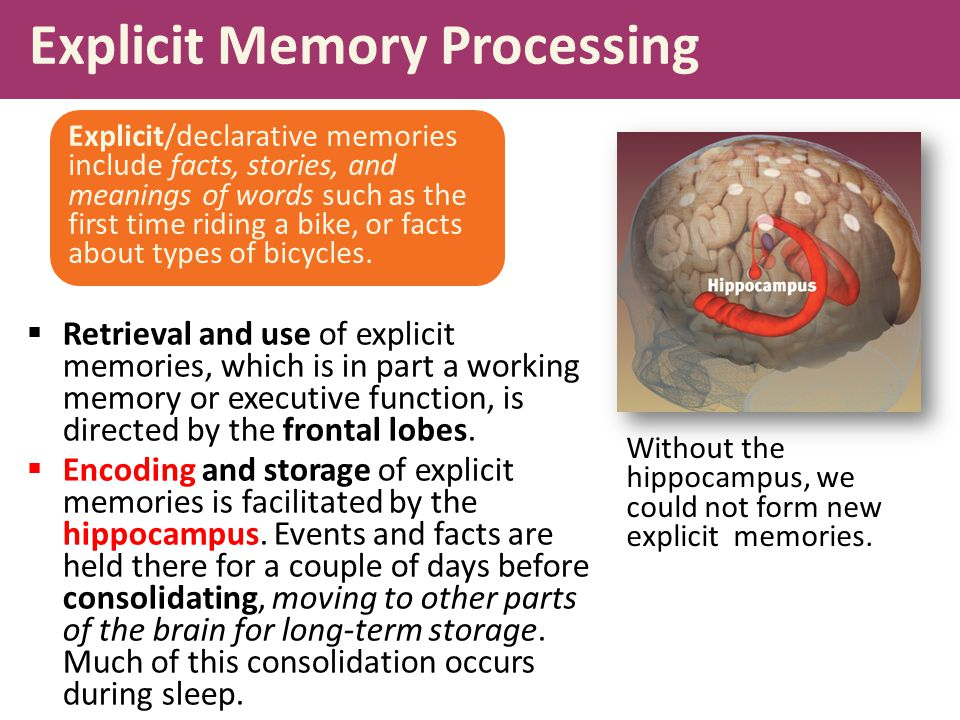 Explicit Memory Processing  Retrieval and use of explicit memories, which is in part a working memory or executive function, is directed by the frontal lobes.