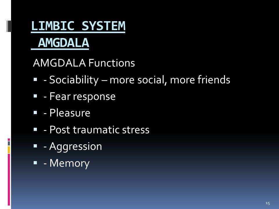 LIMBIC SYSTEM AMGDALA AMGDALA Functions  - Sociability – more social, more friends  - Fear response  - Pleasure  - Post traumatic stress  - Aggre
