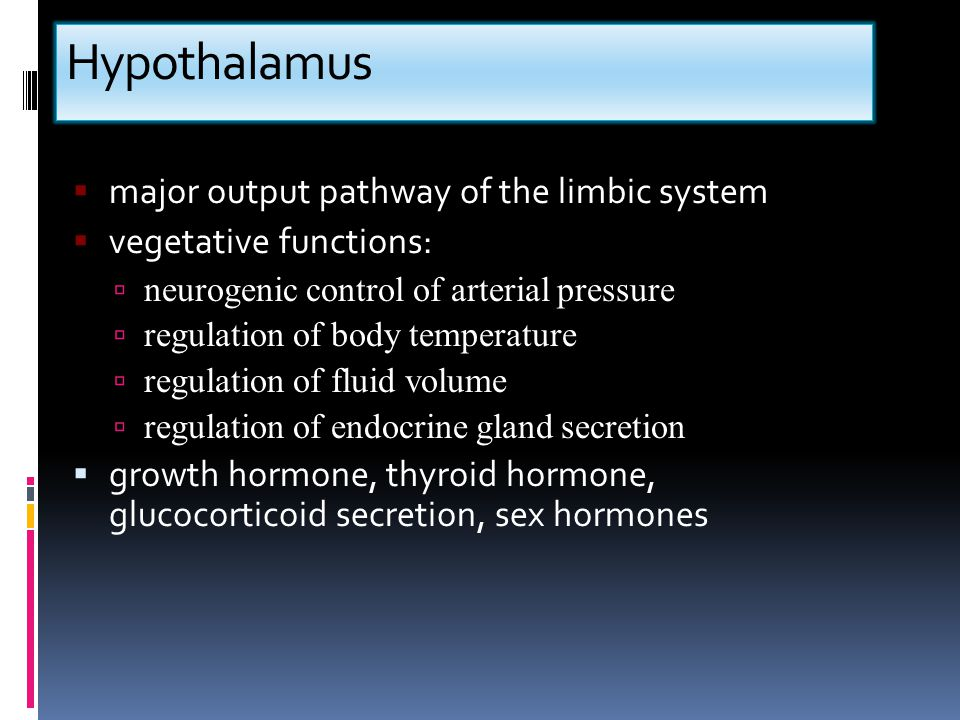 Hypothalamus  major output pathway of the limbic system  vegetative functions:  neurogenic control of arterial pressure  regulation of body temper