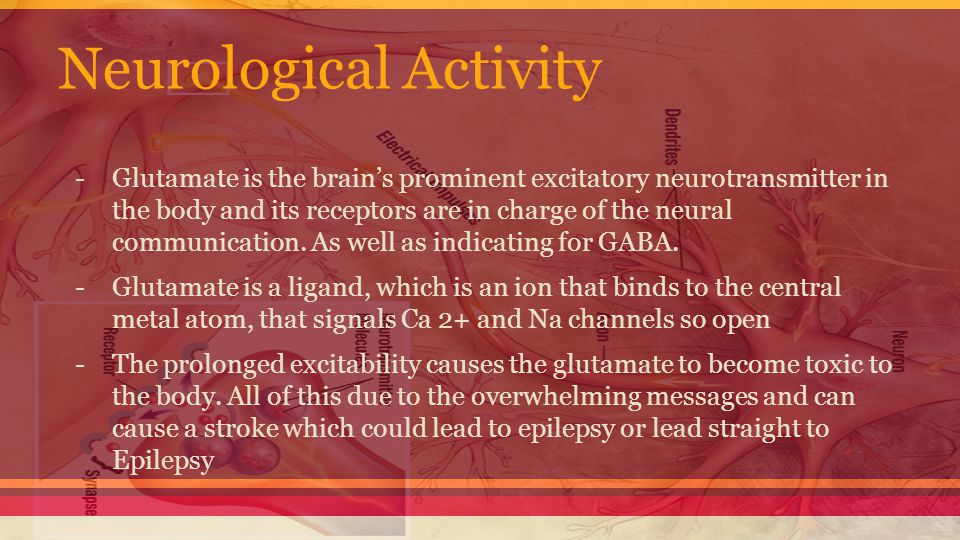 Neurological Activity -Glutamate is the brain's prominent excitatory neurotransmitter in the body and its receptors are in charge of the neural communication.
