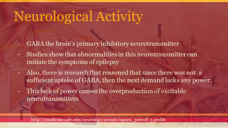 Neurological Activity -GABA the brain's primary inhibitory neurotransmitter -Studies show that abnormalities in this neurotransmitter can initiate the
