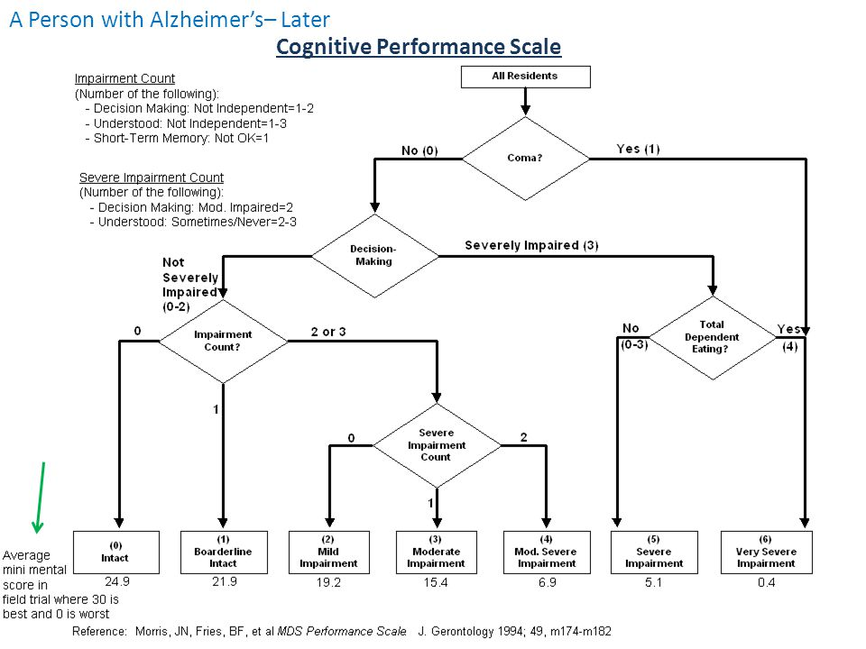 Cognitive Performance Scale A Person with Alzheimer's– Later